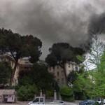 Fumata nera per l'ospedale di Colleferro. I buoi sono scappati dal recinto. Chi andrà a riprenderli a Palestrina?