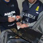 Roma. La Guardia di Finanza sequestra oltre 16 Kg di coca e arresta 7 narcotrafficanti all'Aeroporto di Fiumicino [FotoeVideo]